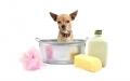 Igiene e cura Cane e Gatto